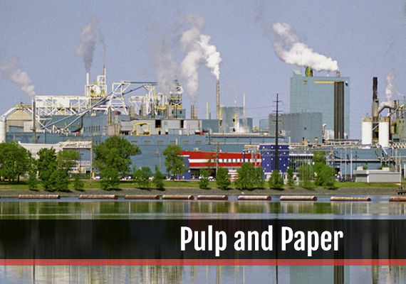 Fagen, Inc.'s experience in the Pulp And Paper industry.